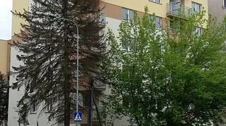Budynek B1/C, ul. Reduta