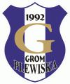wielkopolskie, poznański, Plewiska