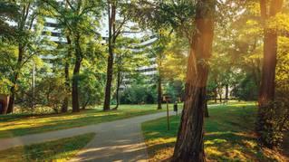 Piasta Park III