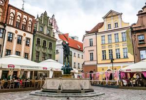 Poznań, Stare Miasto, Naramowice