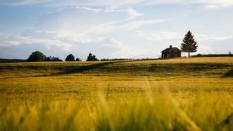 Gospodarstwo rolne w spadku