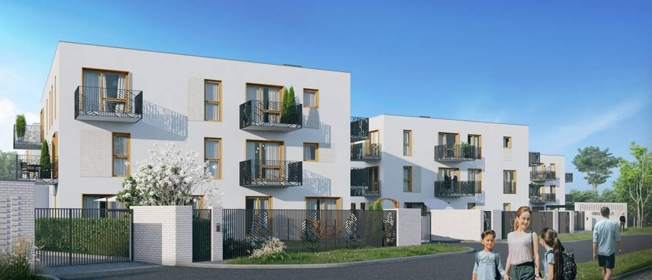 Wiemy, kto wybuduje osiedle wokół starego dębu we Wrocławiu