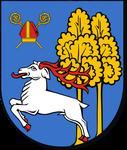 warmińsko-mazurskie, ełcki, Ełk