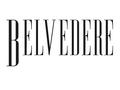 Belvedere Nieruchomości