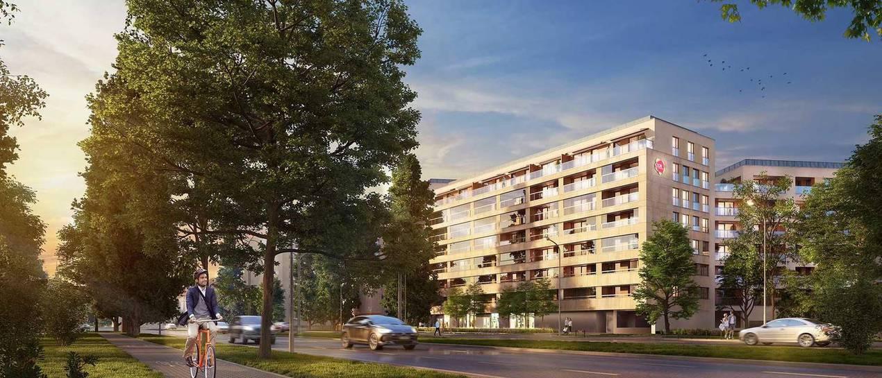 Wyniki Dom Development za I Q 2019