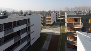 Lindego Park Bronowice