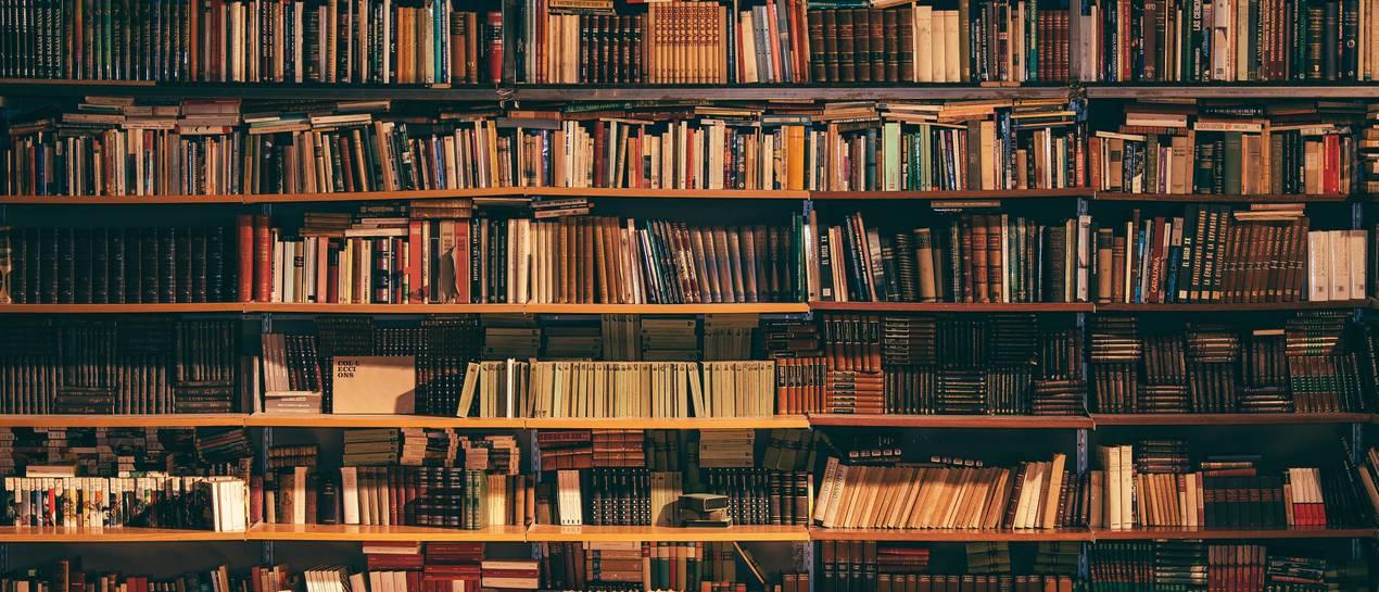 Wybieramy Półki Na Książki Rynekpierwotnypl