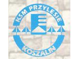 "KSM ""Przylesie"""