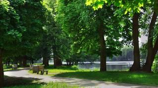 Wirowa Park