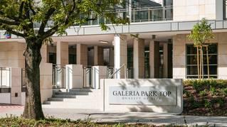 Galeria Park Top