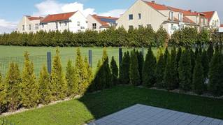 Osiedle Zielony Grunwald