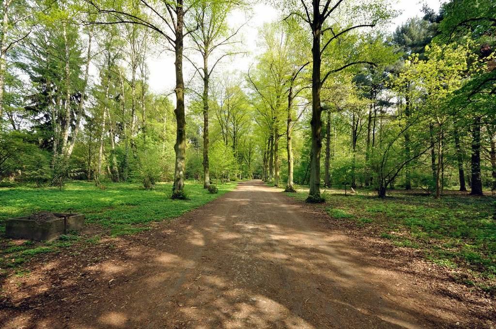 Park Grabiszyński Wrocław