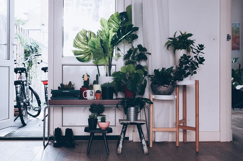 Aranżacja przedpokoju - stojak na rośliny