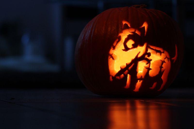 halloween - pies wydrążony w dyni